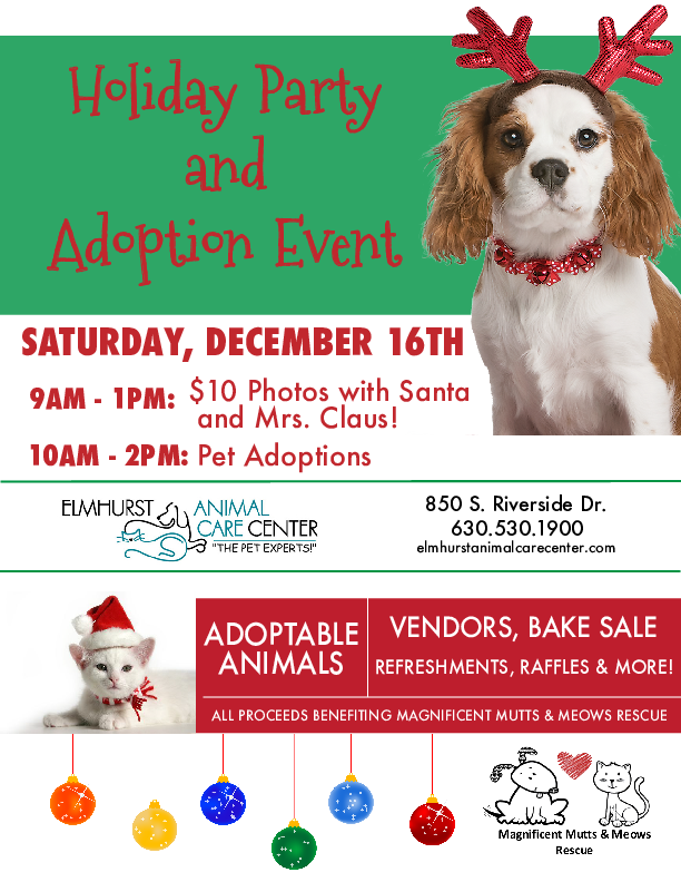 Eacc Christmas Adoption Event 2017 Magnificent Mutts Rescue